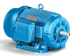 Motors Built for Severe Duty Applications