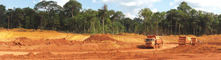Life After Mining: Restoring the Amazon Rainforest