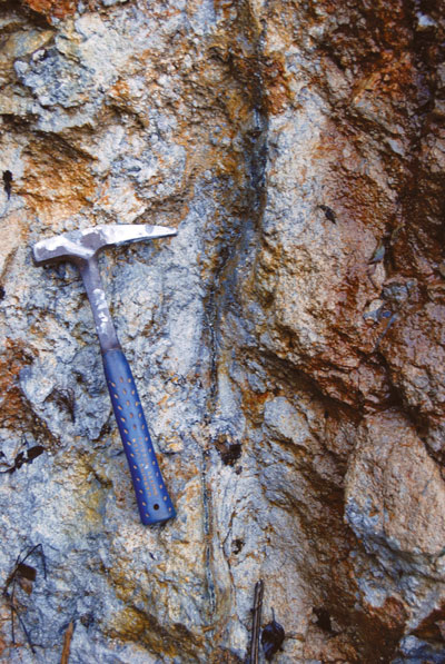 Mineralized rocks at Crater Gold's Crater Mountain project.