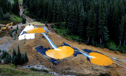 Gold King Spill Daylights EPA's Poor Remediation Practices