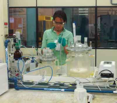 Vale is incubating and cultivating microbes for bioleaching copper at the CDM.